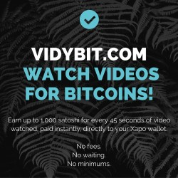 watch videos for bitcoins